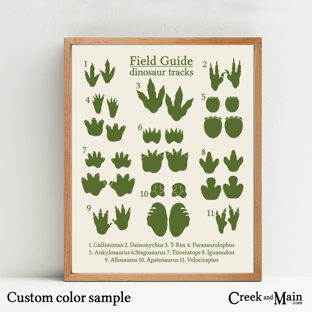This is a graphic of Printable Dinosaur Footprints pertaining to dinosaur pdf free