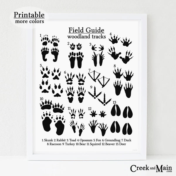 printable nursery art, animal tracks poster, black and white