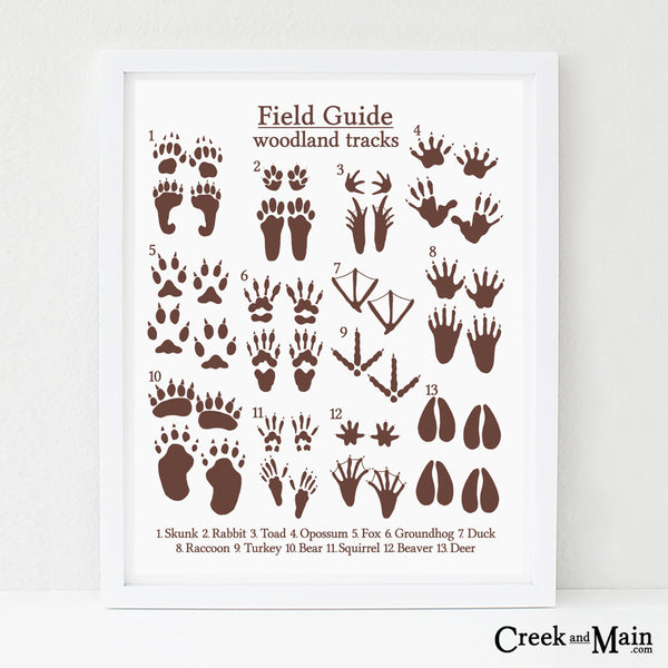 woodland nursery decor, animal tracks wall art, brown and white