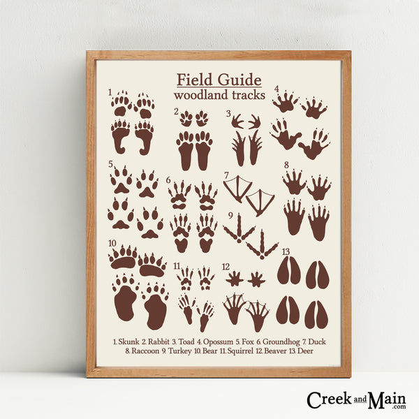woodland nursery art, animal tracks, brown