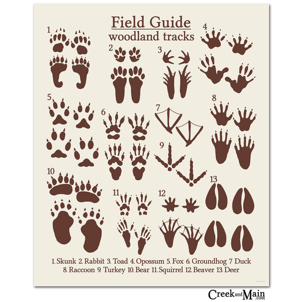 printable animal tracks poster, creekandmain.com