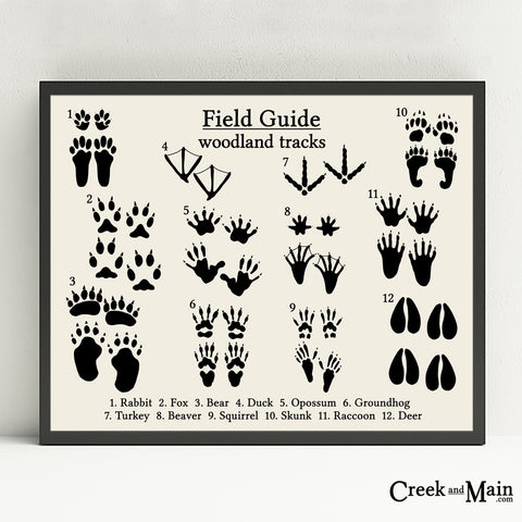 animal tracks poster,woodland footprints, black on eggshell,