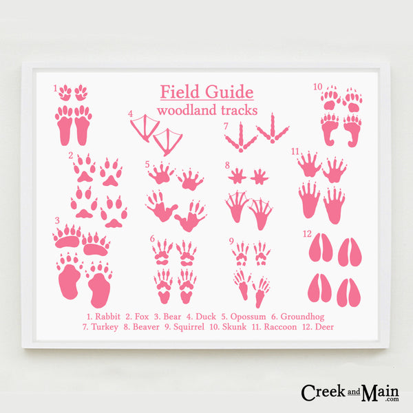 animal tracks print, pink, woodland nursery art