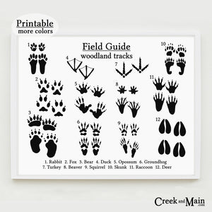 animal tracks poster, printable nursery art