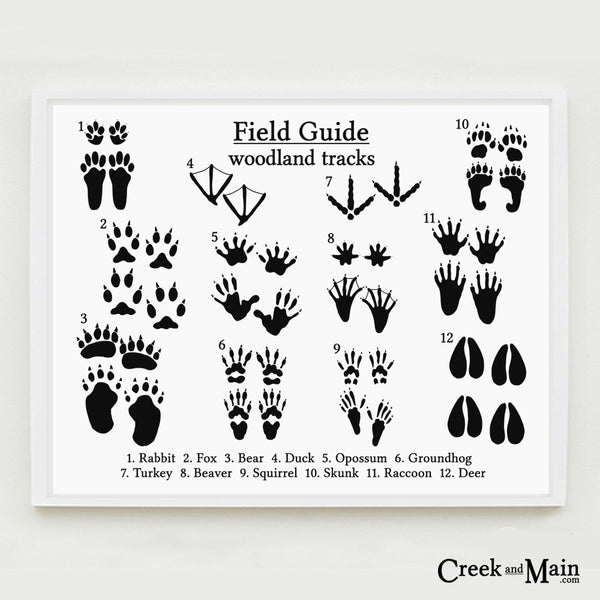 woodland animal tracks wall art, black and white