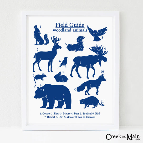 field guide animal poster, printable