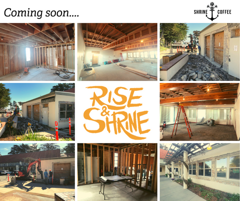 Coming Soon Shrine Coffee
