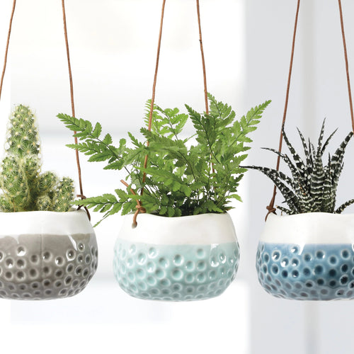 Baby Dotty Hanging Planter