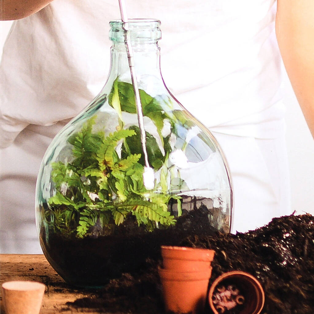 Bottle Terrarium Kit