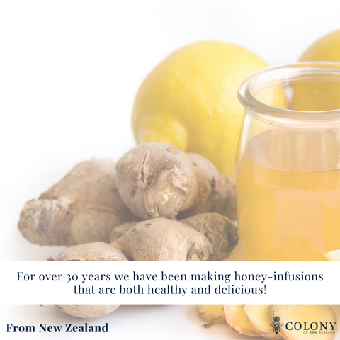 honey infusions gingerbee robs heritage ginger bee turmeric lemon kawakawa hemp apricot marmalady