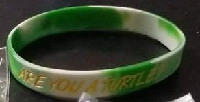 Are You A Turtle Wristband