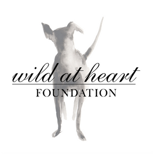 Bird + Wolf partners with Wild at Heart Foundation
