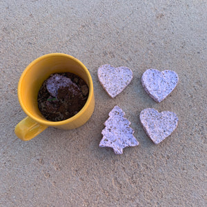 5 Recyled Paper Seed Bombs