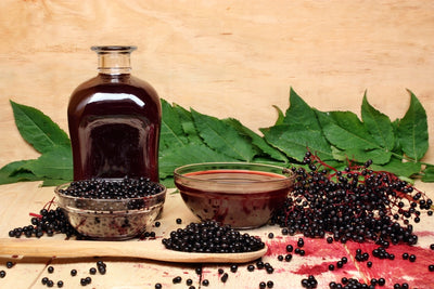 Backyard Survival Herbs - Elderberry - For Taste or Tonic