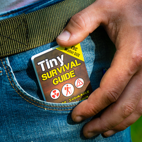 Tiny Survival Guide in Pocket