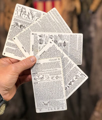 Lee Nading Wilderness Survival Cards