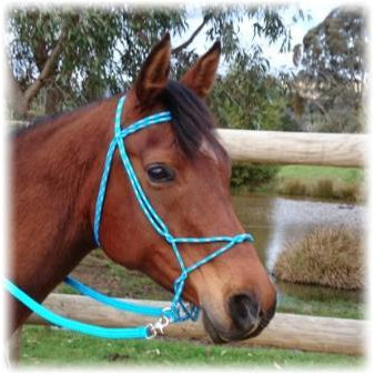 Nungar Knots FREEDOM Bitless Bridle