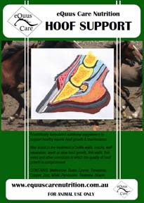 Hoof Support by eQuus Care Nutrition