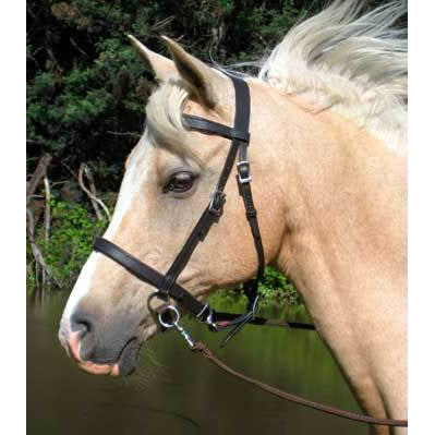 English Bitless Bridle in Brown