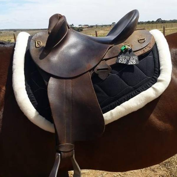 Saddle Pads - Gone RIDING