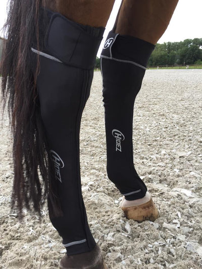 HIDEZ Compression Socks HINDS - for Horses