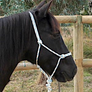 Nungar Knots 8mm Headstall - WHITE BLUE