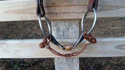 Bit Hobble Infinity - by Evolve Equine