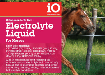 IO Electrolyte Liquid For Horses 1lt