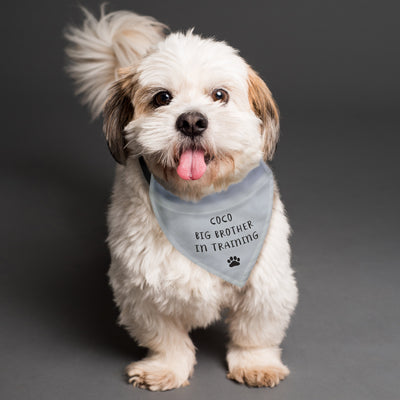 Personalised Dog Bandana - Shop Personalised Gifts