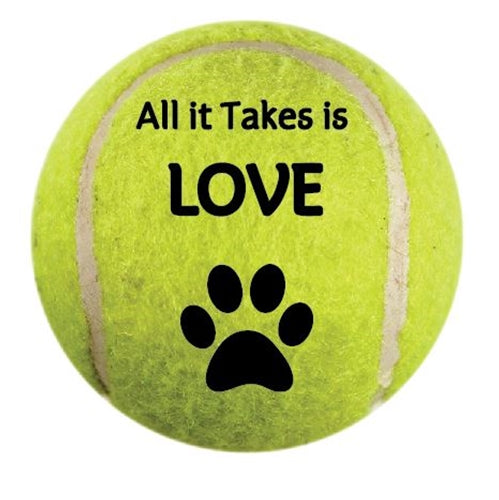 All it Takes is Love Car Magnet