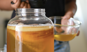Kombucha Brewing Workshop for New Bees - April