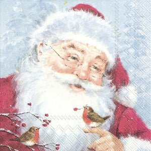 Lunch Napkins – Friendly Santa