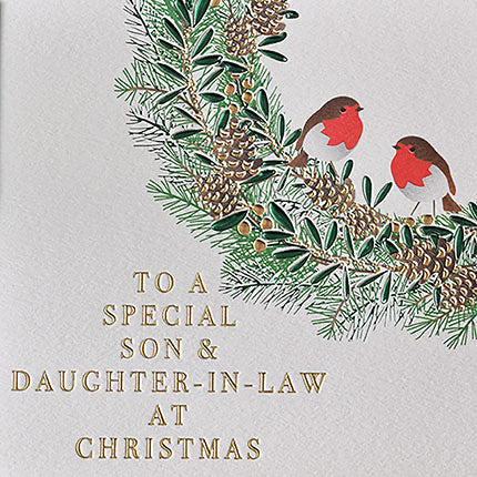 To a Special Son & Daughter-in-law - Robins