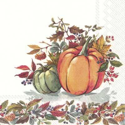 Lunch Napkins – Fall Pumpkins