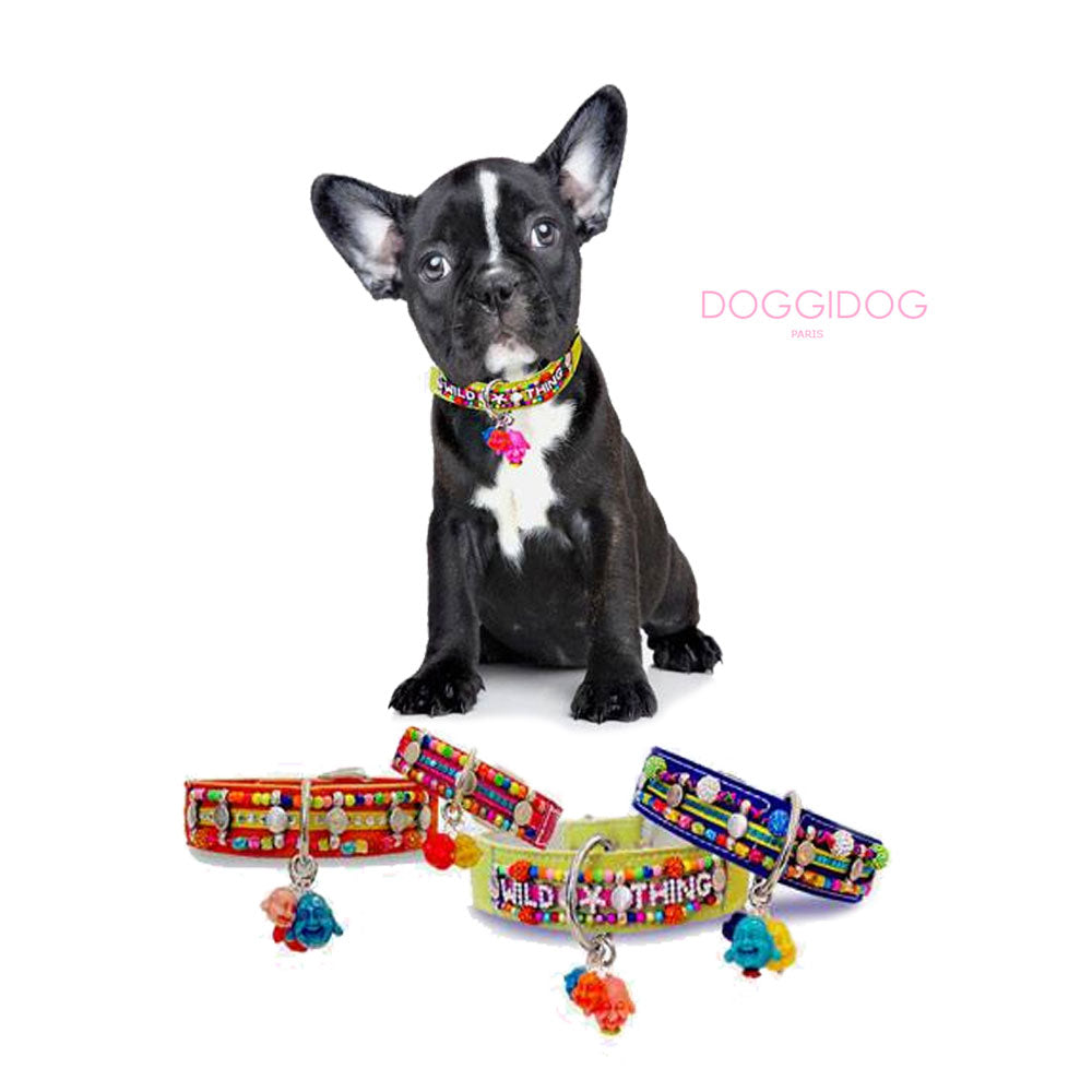 Doggidog Paris - Dog Couture