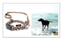 Lade das Bild in den Galerie-Viewer, up2dog-suchtrupp-hundehalsband-nylonhalsband-clickhalsband-clickverschluss-hundeleine-cityleine-nylonleine-modell-suchtrupppleocollection-leo-brauntoene-beige-leopardenlook-labrador
