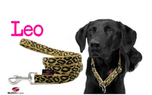 Lade das Bild in den Galerie-Viewer, up2dog-suchtrupp-hundeleine-cityleine-nylonleine-hundestoffleine-hundehalsband-stopphalsband-modell-leo-suchtruppcollection-leopard-leolook-labrador