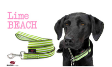 Lade das Bild in den Galerie-Viewer, up2dog-suchtrupp-hundeleine-cityleine-nylonleine-hundestoffleine-hundehalsband-stopphalsband-modell-limebeach-suchtruppbeachcollection-limegruen-weiss-gestreift-labrador
