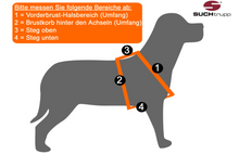 "Lade das Bild in den Galerie-Viewer, SUCHtrupp Hundegeschirr | Nylongeschirr | Brustgeschirr | Dog Harness ""HOT ZEBRA"""