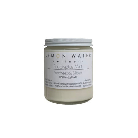 Eucalyptus Mint - Pure Soy Candle