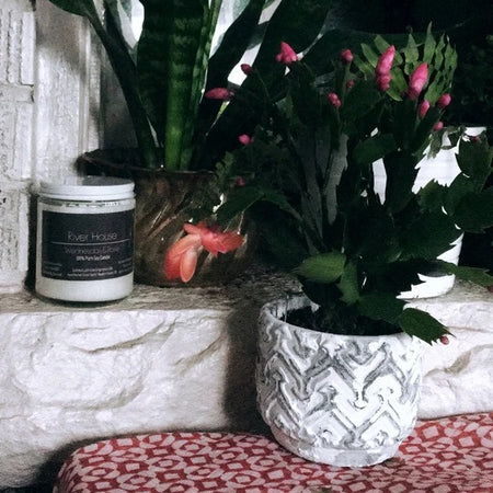 River House Wednesday & Rose Pure Soy Candle - Lemon Water Wellness