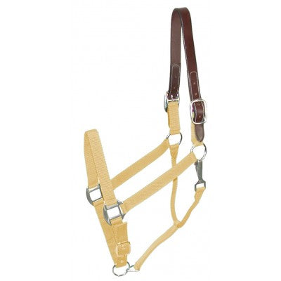 Gatsby Classic Nylon Breakaway Halter with Snap - Equitique-USA
