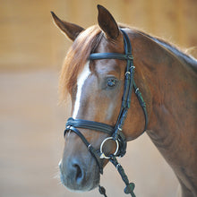 "Load image into Gallery viewer, Kavalkade ""Filip"" Crank Noseband Bridle - Equitique-USA"