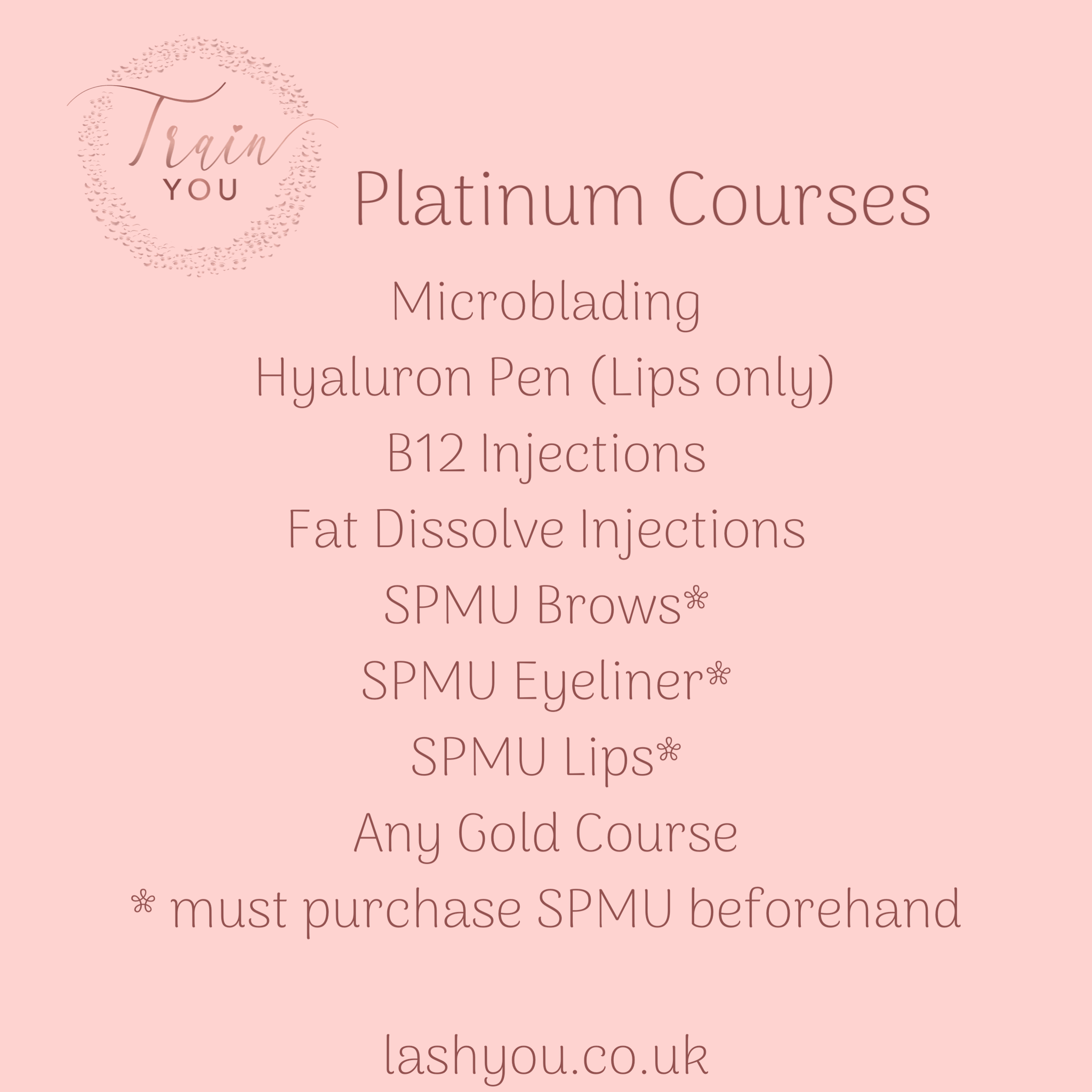1:1 Platinum 3 Course Package