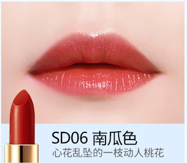 Moisturizing Waterproof Long Lasting Lipstick