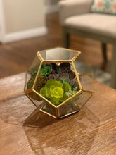 Load image into Gallery viewer, Geometric Glass Terrarium Planter & Succulent Planter