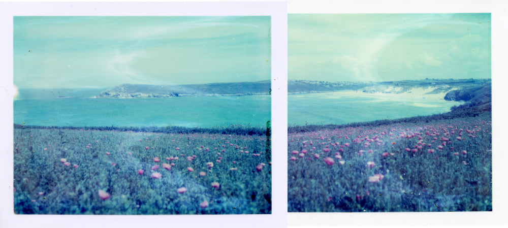 Polaroid of poppies in flower above Crantock Bay