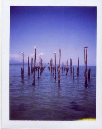 Polaroid image of an old pier, Cahuita