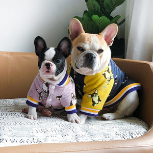 Dog  Jacket French Bulldog