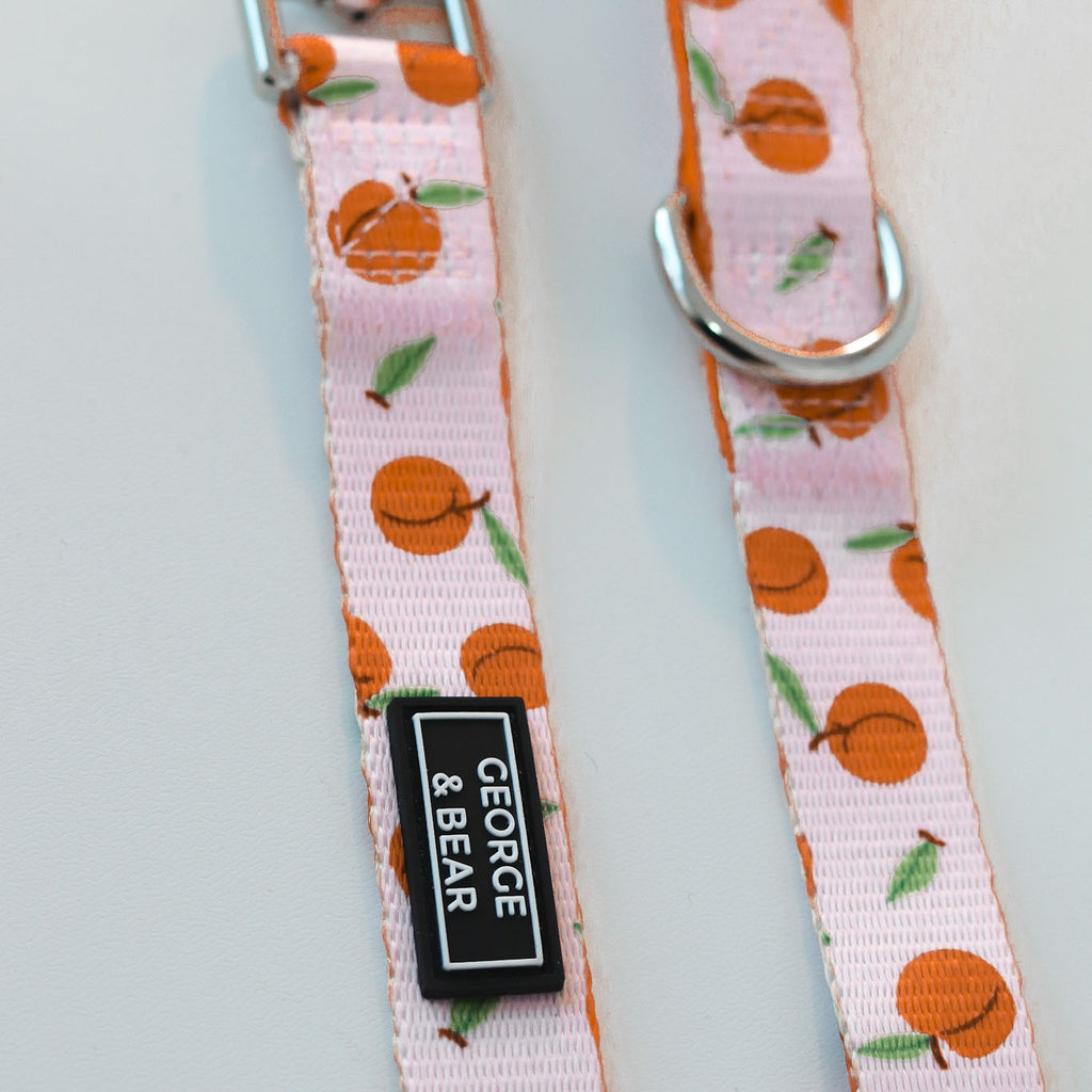 Peach Perfect Dog Lead